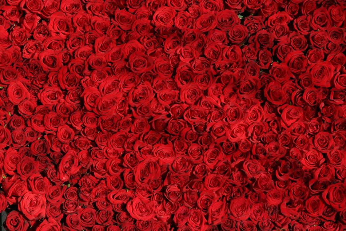 5 Valentines Day Marketing Ideas