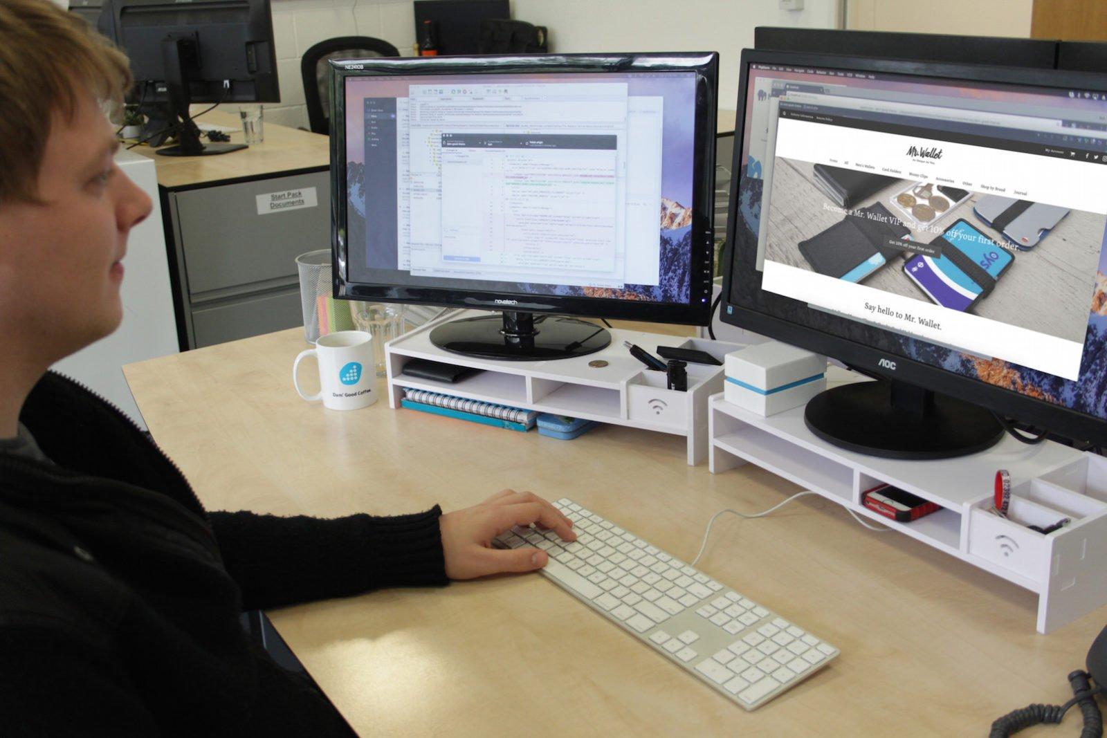 eCommerce Wordpress Website Design by Damteq Developer