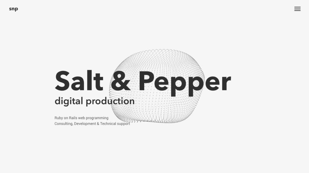 SNP Monochrome Website Design - Digital Marketing Agency